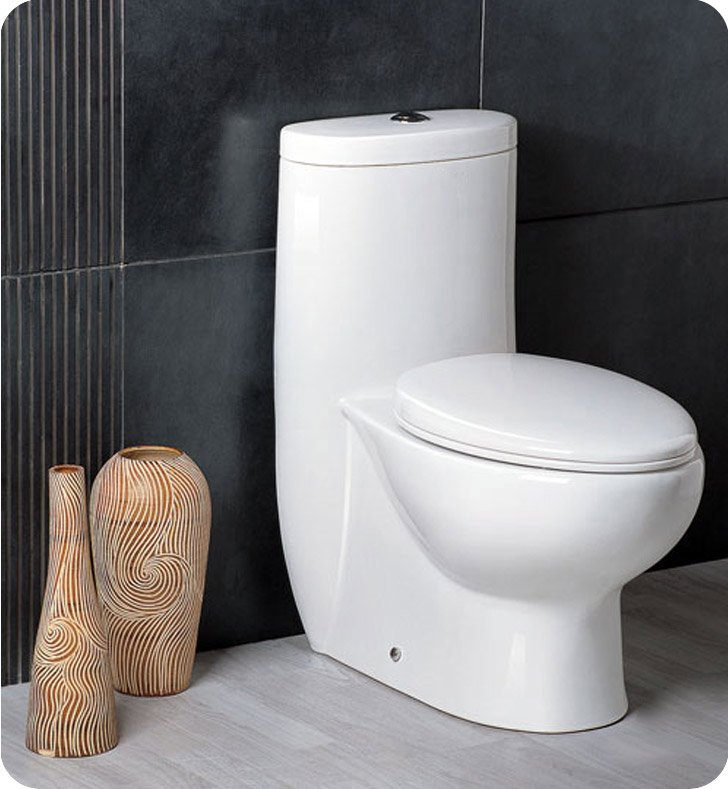 Fresca FTL2309 Delphinus One Piece Dual Flush Toilet with Soft Close Seat
