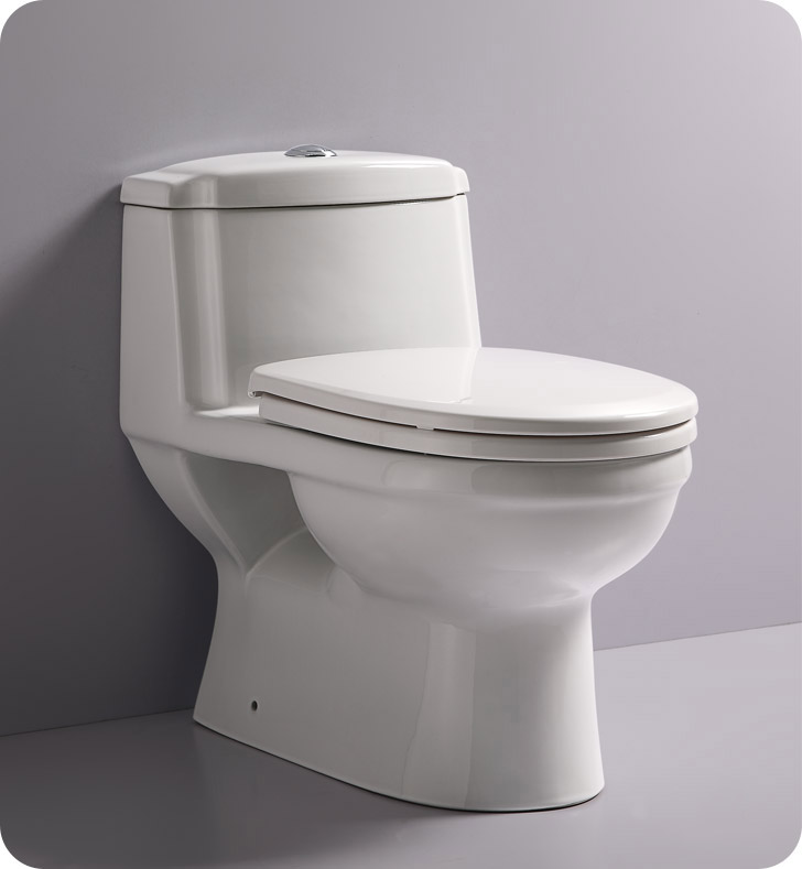 Eago TB222 One Piece Dual Flush High Efficiency Eco Friendly Toilet