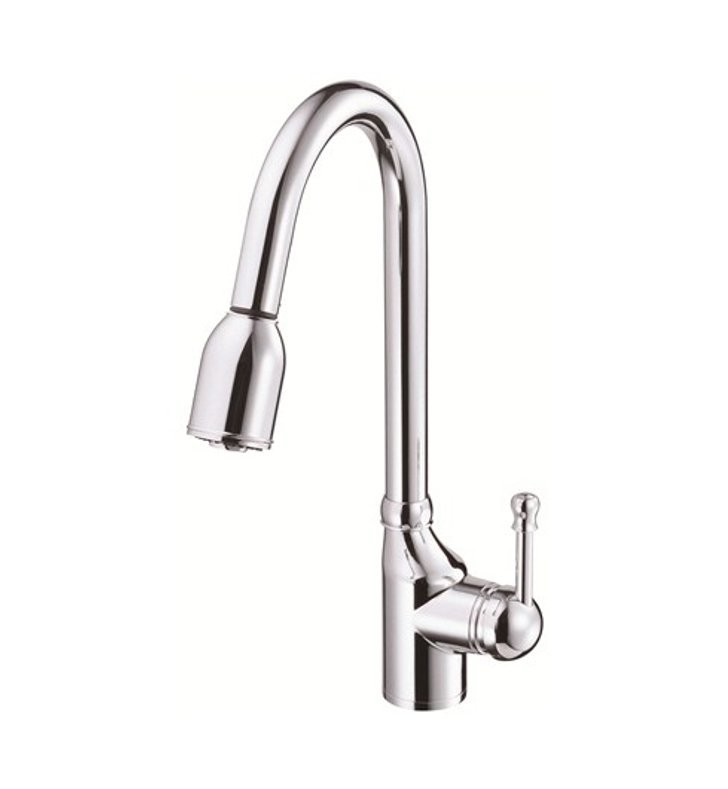 Danze D457015 Melrose™ Single Handle Pull-Down Kitchen Faucet in Chrome