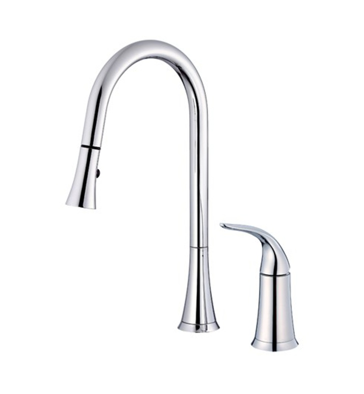 Danze D459022 Antioch™ Single Handle Pull-Down Kitchen Faucet in Chrome