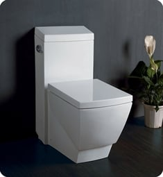 Beautiful Fresca FTL2336 Apus One Piece Elongated Toilet With Soft Close Seat ...