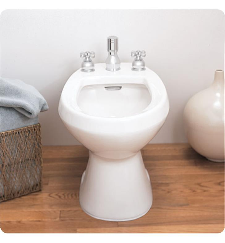 American Standard 5023100 Cadet Bidet With Flushing Rim and Vertical ...