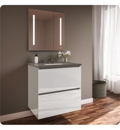 "Robern 30219100B00002 Curated Cartesian 30"" Double Drawer Vanity - White Glass, Stone Gray Top"