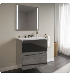 "Robern 30119400B00002 Curated Cartesian 30"" Double Drawer Vanity - Tinted Gray Mirror Glass, Silestone Lyra Top"